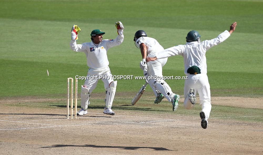 Ross Taylor is run out during play on Day 3 of the 1st test match.  New Zealand Black Caps v Pakistan, Test Match Cricket. Seddon Park, Hamilton, New Zealand. Sunday 9 January 2011. Photo: Andrew Cornaga/photosport.co.nz
