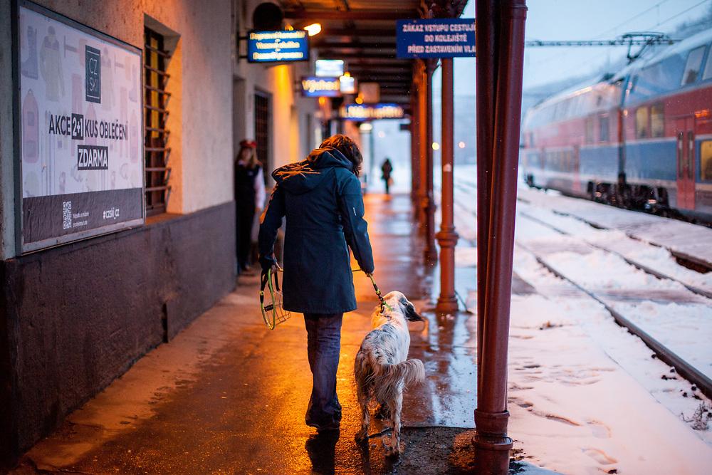"""English Setter """"Rudy""""  am 03.02. 2019 mit seiner besten Freundin am Bahnhof """"Vysocanska"""" in Prag, (Tschechische Republik).  Rudy wurde Anfang Januar 2017 geboren."""