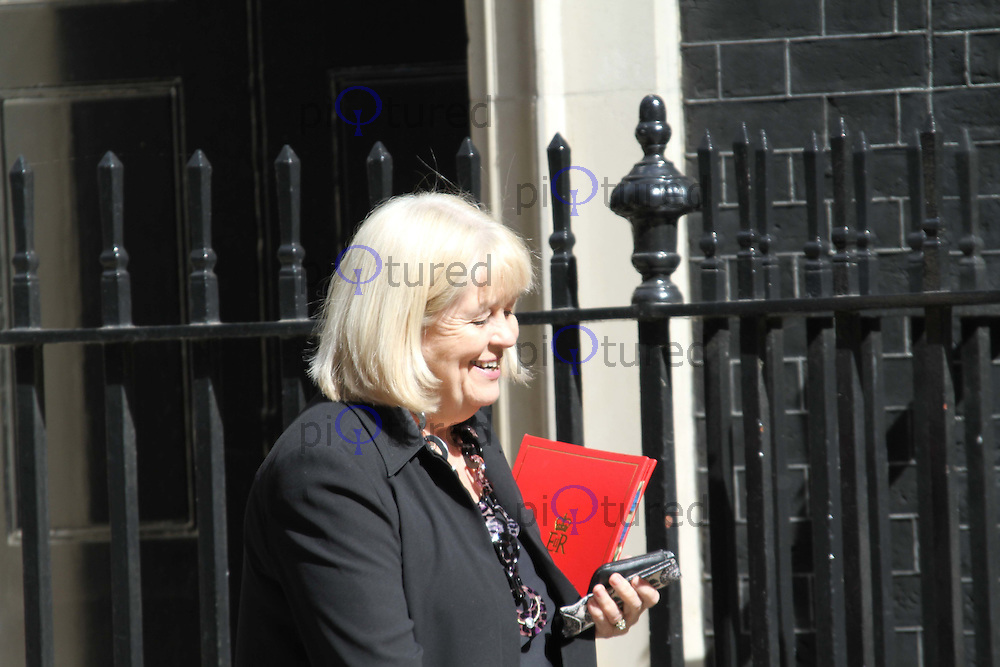 Secretary of State for Wales Cheryl Gillan MP Cabinet Ministers arriving in Downing Street, London, UK, 24 May 2011:  Contact: Rich@Piqtured.com +44(0)7941 079620 (Picture by Richard Goldschmidt)