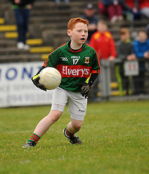 Gavin O Forraigh 4th class pupil from Scoil Raifteiri Castlebar displaying his skills at the Cumann Na mBunscoil games at halftime during the Mayo v Kerry national football league encounter. Pic Conor McKeown