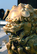 Golden lion statue in the Forbidden City, Beijing, China
