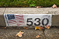 United States Flag Painted on Street Address, Glendora, California