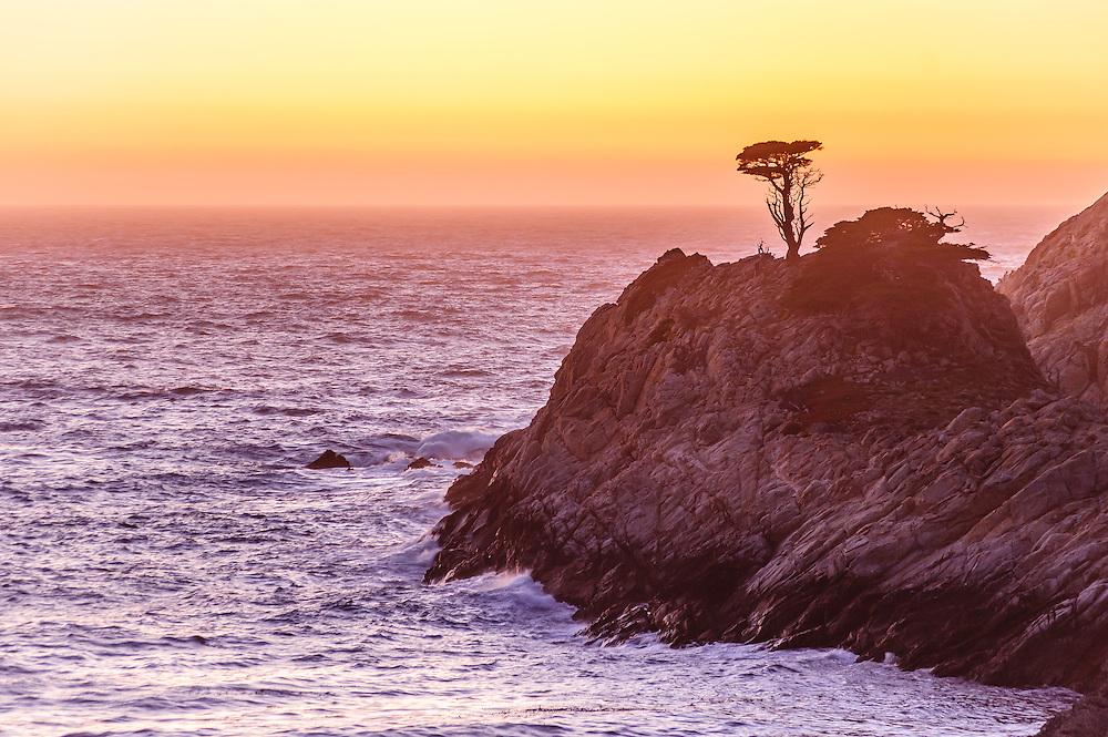Point Lobos State Reserve in Carmel, California