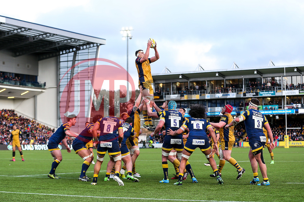 Sam Jeffries of Bristol Rugby wins a lineout - Rogan Thomson/JMP - 04/03/2017 - RUGBY UNION - Sixways Stadium - Worcester, England - Worcester Warriors v Bristol Rugby - Aviva Premiership.