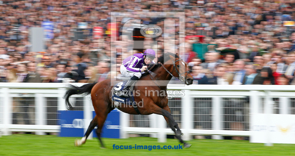 Picture by John Hoy/Focus Images Ltd. 07583422396.20/10/12.Joseph O'Brien riding Excellabration wining the Queen Elizabeth II Stakes at Ascot racecourse, Berkshire.