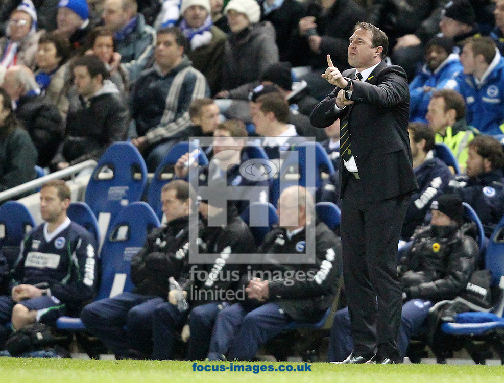 Picture by Paul Terry/Focus Images Ltd. 07545642257.07/03/12.Malky Mackay, manager of Cardiff City during the Npower Championship match at The American Express Community Stadium, Brighton.