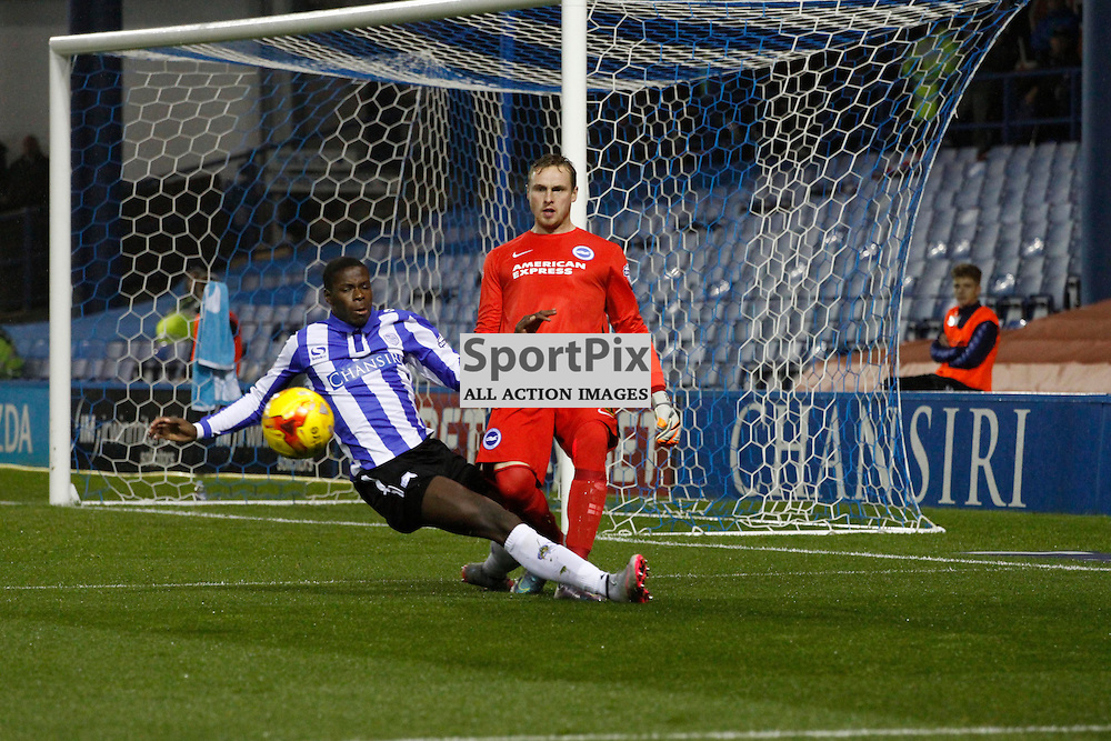 Lucas Joao takes out David Stockdale during Sheffield Wednesday v Brighton & Hove Albion, Tuesday 03 November 2015, Hillsborough Sheffield