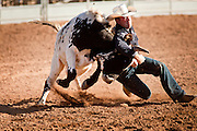 26 NOVEMBER 2011 - CHANDLER, AZ:   JEFF RICHARDSON competes in the steer wrestling at the Grand Canyon Pro Rodeo Association (GCPRA) Finals at Rawhide Western Town in west Chandler, AZ, about 20 miles from Phoenix Saturday. The GCPRA Finals is the last rodeo of the GCPRA season. The GCPRA is a professional rodeo association based in Arizona.   PHOTO BY JACK KURTZ