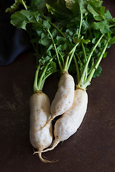 White Root Vegetable Radishes