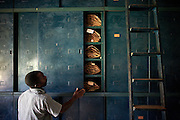 The Herbarium, containing over 100,000 plant specimens, in Yangambi, DR Congo, on Saturday, Dec. 6, 2008. Every specimen in the herbarium is at least 50 years old and was collected by the Belgians from all over Congo, Rwanda and Burundi. It represents a complete survey of everything in the Congo, unfortunately however much of the animal collection has been lost or stolen. .Yangambi Research Station is the former Belgian headquarters for all major scientific ecological, biological and agricultural research in Africa between the 1930's and 1960. Abandonment began in 1960 with independence and although the Congolese attempted to maintain Yangambi, sometimes in co-operation with the Belgians, the facility began to fall into disrepair through the 70's and 80's. War in the 1990's halted all potential for progress and for the past decade a skeleton crew has made a futile attempt to stave off further decline.