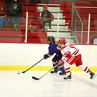 Women's Ice Hockey: Saint Mary's University (Minn.) Cardinals vs. Williams College Ephs