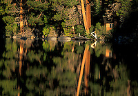 Scenic of trees and cabin reflected in Cascade Lake. Lake Tahoe
