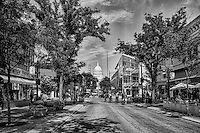 Afternoon on State Street (monochrome)