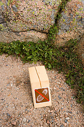 """A """"no hiking' sign on the summit of Cadillac Mountain in Maine's Acadia National Park.  The sign is part of an effort to regenerate alpine vegation."""