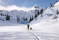 Cross country skier and dog touring in Heather Meadows Recreation Area, North Cascades Washington