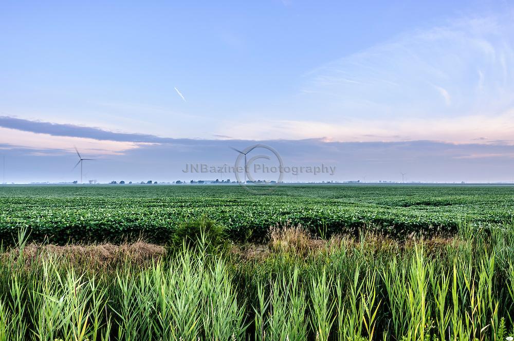 Wind turbines at dawn on farmland in Leamington, Ontario Canada