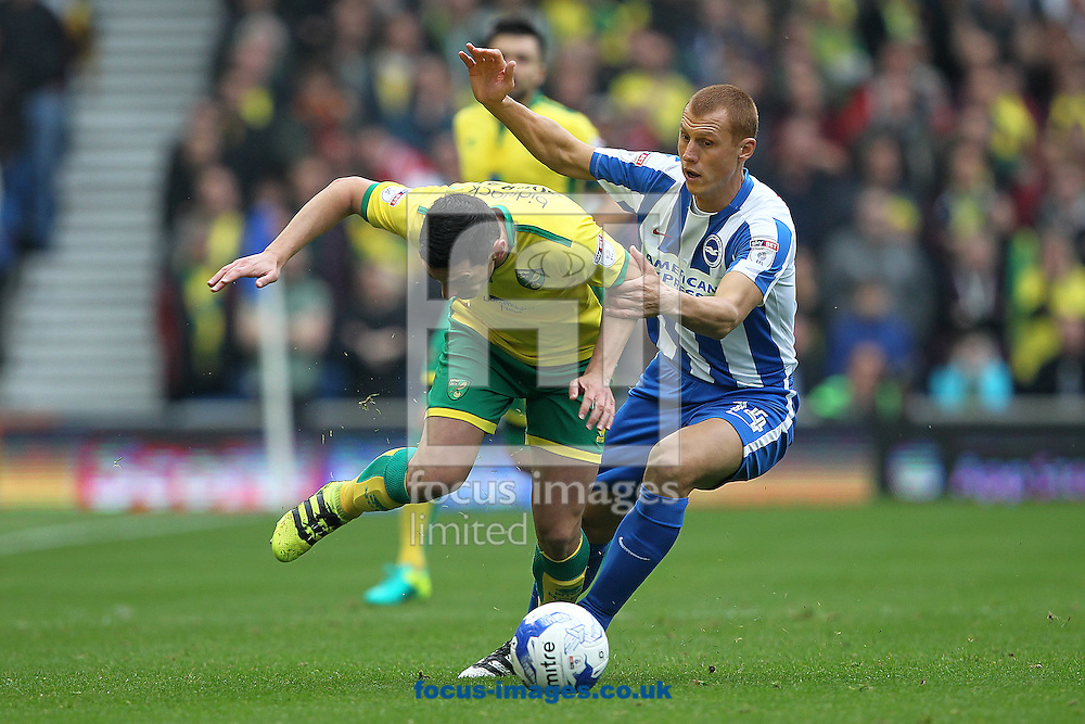 Graham Dorrans of Norwich and Steve Sidwell of Brighton &amp; Hove Albion in action during the Sky Bet Championship match at the American Express Community Stadium, Brighton and Hove<br /> Picture by Paul Chesterton/Focus Images Ltd +44 7904 640267<br /> 29/10/2016