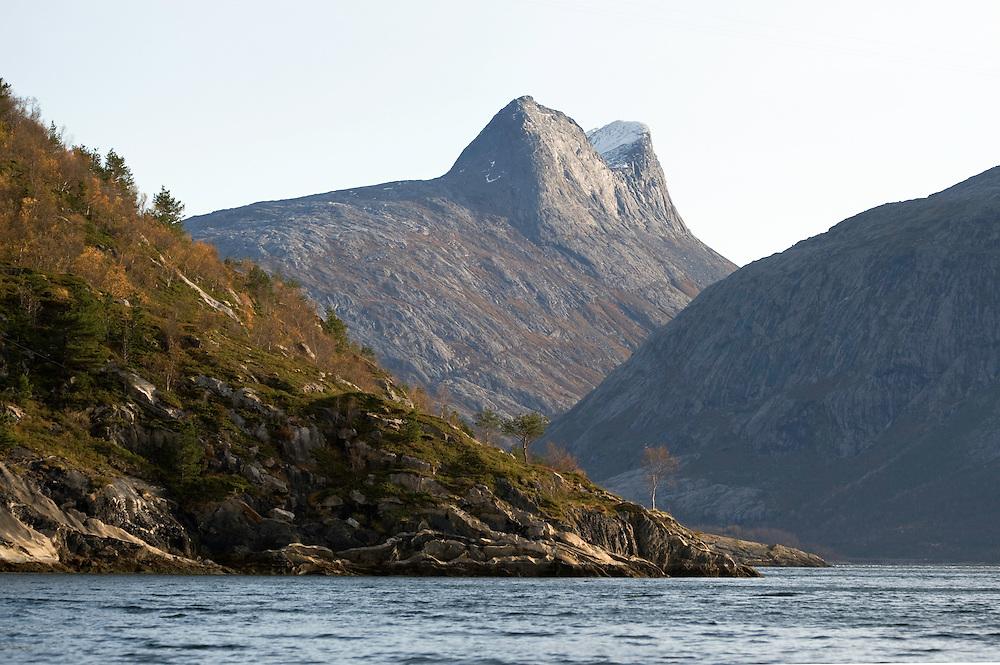Atlantic marine life, Saltstraumen, Bodö, Norway