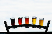 Samplers of (left to right) Hefeweizen, Kolsch, Pale Ale, ESB and Stout at the 4 Pine Brewing Company, Manly, Sydney, New South Wales, Australia