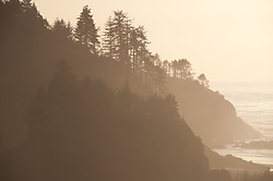 North Head at Cape Disappointment State Park, Ilwaco, Washington, US