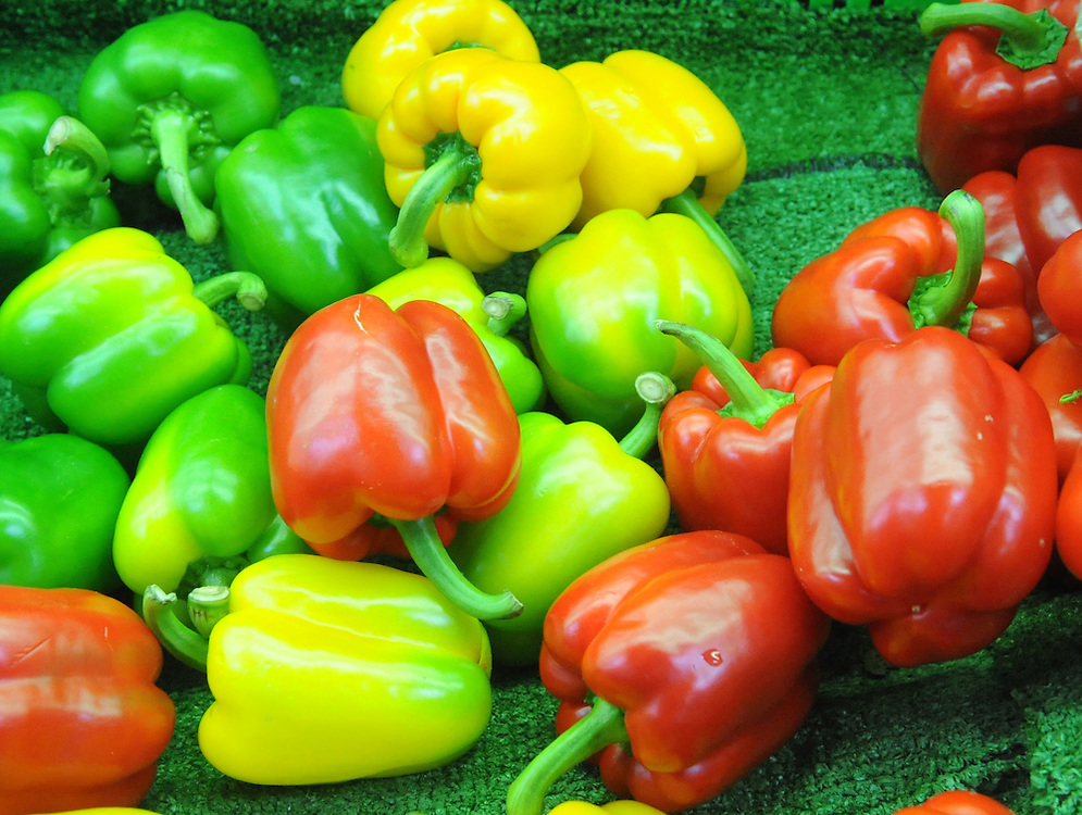 Red, green, and yellow peppers vegetables, Dannevirke, New Zealand, Thursday, September 18, 2014. Credit:SNPA / Ross Setford