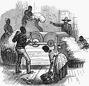 Putting cotton bolls through whipping press before putting it through a saw gin. Slave plantation labour in southern states of America. Woodcut 1860