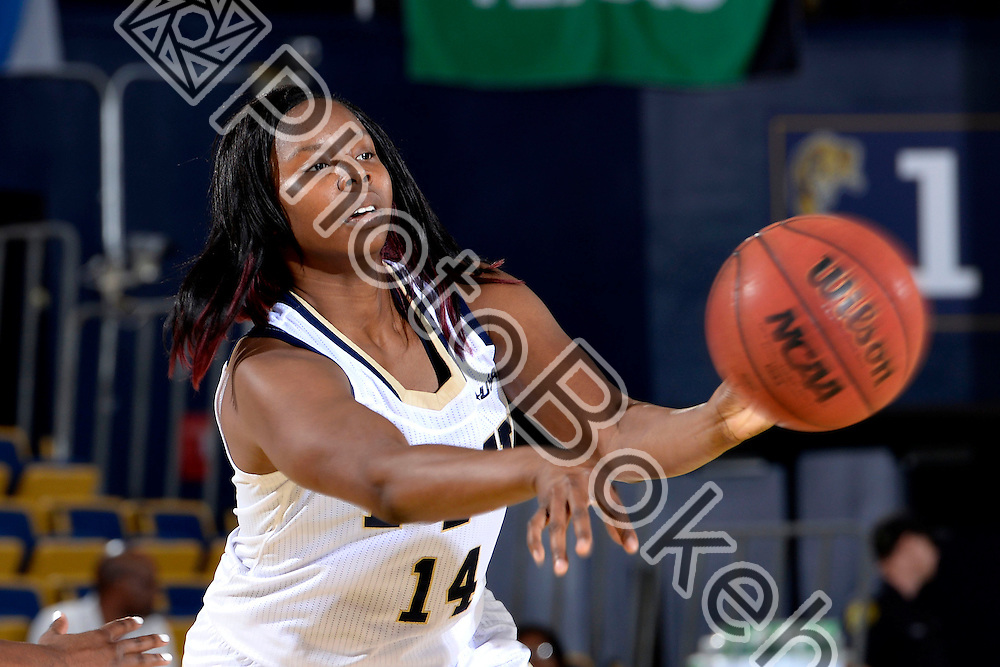 2013 December 28 - FIU's Kamika Idom (14). Florida International University defeated Fairleigh Dickinson, 79-57, at US Century Bank Arena, Miami, Florida. (Photo by: Alex J. Hernandez / photobokeh.com) This image is copyright by PhotoBokeh.com and may not be reproduced or retransmitted without express written consent of PhotoBokeh.com. ©2013 PhotoBokeh.com - All Rights Reserved