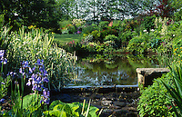 mill pond converted into a garden pool with marginal planting