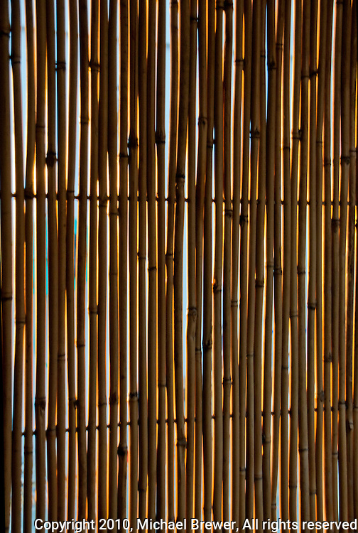 Texture formed by a backlit bamboo screen.