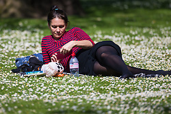 A woman soaks up the sun among the daisies on a perfect spring day in Regents Park. London, May 04 2018.