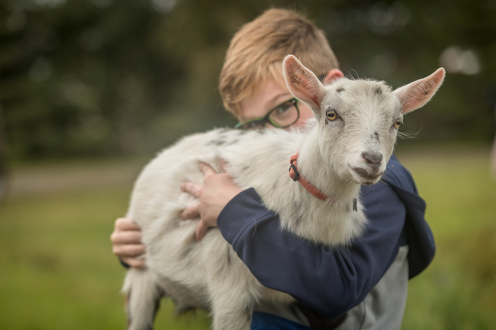 Nine year old Jackson Charton enters his Nigerian dwarf goat, Sylvie, at the Alaska State Fair in Palmer, Alaska