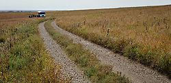 Heather Brown, Chief of Interpretation at the Tallgrass Prairie National Preserve, leads a group of visitors on a tour of the prairie using the park's tour bus on a fall day in October. The 10,894-acre Tallgrass Prairie National Preserve is located in the Flint Hills of Kansas in Chase County near the towns of Strong City and Cottonwood Falls. Less than four percent of the original 140 million acres of tallgrass prairie remains in North America. Most of the remaining tallgrass prairie is in the Flint Hills in Kansas. Tallgrass Prairie National Preserve is the only unit of the National Park Service dedicated to the preservation of the tallgrass prairie ecosystem. The Tallgrass Prairie National Preserve is co-managed with The Nature Conservancy.