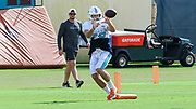 Miami Dolphins wide receiver Reece Horn (18) receives a pass during Minicamp at the Baptist Health Training Facility at Nova Southeastern University, Tuesday, August 6, 2019, in Davie, Fla. (Kim Hukari/Image of Sport)