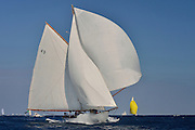 "France Saint - Tropez October 2013, Classic yachts racing at the Voiles de Saint - Tropez<br /> <br /> C,49,TIGRIS,""18,6"",COTRE AURIQUE/1899,ALFRED MYLNE"