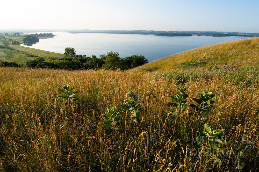 Lake Christina landscape and native grassland from Seven Sisters Preserve - The Nature Conservancy