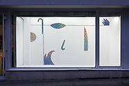 vitrine : Roxane Borujerdi