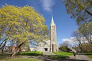 Lademoen kirke er en langkirke fra 1905 på Lademoen i Trondheim kommune i Sør-Trøndelag fylke. Bygd i stein og tegl og opprinnelig med plass til 1054. Trondheims nest største kirke etter Nidarosdomen. Kirka er oppført i jugend- og ny-romantisk stil, og er tegnet av Kristiania-arkitekten Ole E. Stein. Langskipet er i teglstein med et ytre lag av råkoppstein, bygd 1903-05. Dette er den første råkoppkirken i Norge som ble bygd utenfor Oslo.