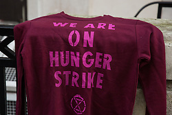 London, UK. 29 November, 2019. A sweatshirt placed outside the Liberal Democrat headquarters by hunger striking Extinction Rebellion climate activists on the twelfth day of an 'Election Rebellion' hunger strike with three demands for election candidates: to tell the truth by declaring a Climate and Ecological Emergency, to promote policies to halt biodiversity loss and reduce greenhouse gas emissions to net zero by 2025 and to help the Government create and be led by a Citizen's Assembly on climate and ecological justice.