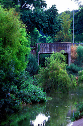 Stock photo of an old bridge over the bayou in Buffalo Bayou Park in Houston Texas