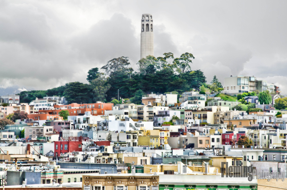 In the Telegraph Hill neighborhood of San Francisco, California