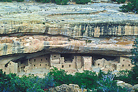 Spruce Tree House, had 14 rooms and 8 kivas.  Mesa Verde National Park, Colorado.