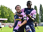 Dulwich Hamlet v Tooting & Mitcham