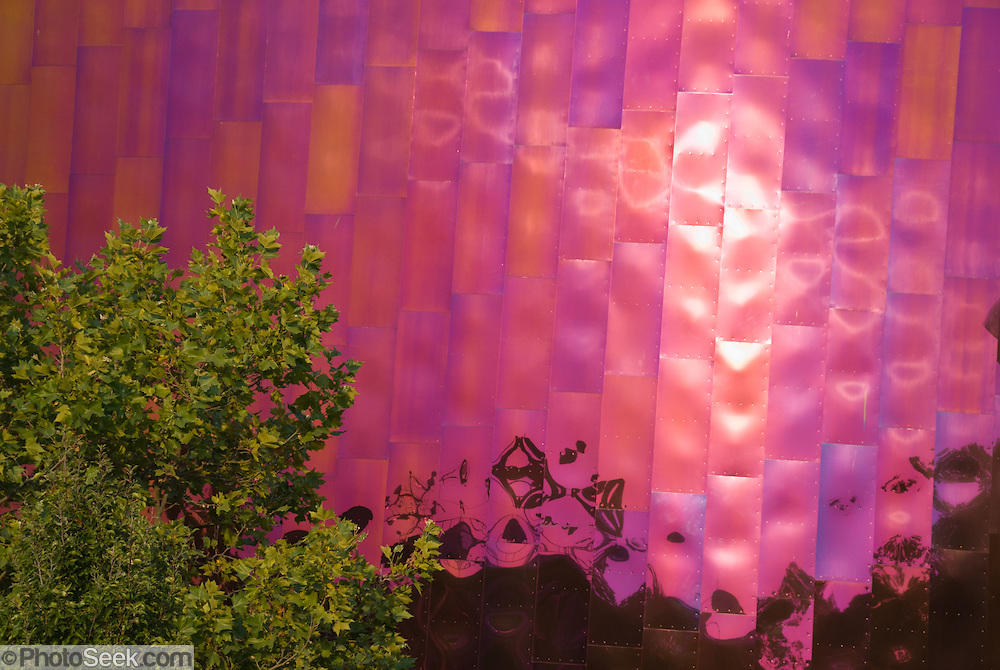 "The Experience Music Project (EMP, opened in the year 2000) is a museum of music history founded by Paul Allen (the co-founder of Microsoft Corporation), located on the Seattle Center campus, in Seattle, Washington, USA. Located near the Space Needle, it is one of the two stops on the Seattle Center Monorail, which runs through the building. Paul Allen's Science Fiction Museum and Hall of Fame is located within the EMP building. The structure of EMP was designed by Frank Gehry, and resembles many of his firm's other works in its sheet-metal construction, such as Guggenheim Museum Bilbao, Walt Disney Concert Hall and Gehry Tower. The central ""Sky Church"" room pays homage to Jimi Hendrix and other rock 'n' roll icons. EMP has provided funding for radio station KEXP in partnership with the University of Washington."