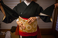 Toshiyu dressing in her Okiya (geisha house).Geisha from geisha's distric of Miyagawacho.Kyoto. Kansai, Japan.