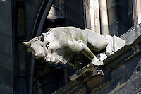 Gargoyle on Notre Dame, the 13th century Gothic Cathedral Reims France.