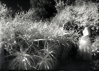 Escape, The Garden Project.<br />