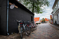 Scenes from Odense