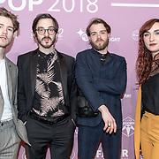 NLD/Amsterdam/20180213 - Edison Pop Awards 2018, Indian Askin