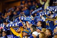 Fotball , 23. november 2014 , NM-finale herrer , cupfinale , Odd - Molde 0-2<br /> <br /> illustrasjon , Tornekrattet supportere , supporter  , skjerf
