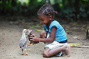 Photo Shows: <br /> Oldest Daughter: Vaviroa Lalatianan, Female, 6 years old. Bilateral Cleft lip, Before, playing with chickens.<br /> <br /> Vaviroa's home is 3 hours walk from the nearest hospital at Anivorano Est where their parents can find information about  Operation Smile and find transport to the mission in Tamatave.  They were aware of Operation Smile&rsquo;s 2013 mission to Antananarivo but did not have the money to get there. They have never been to Tamatave where Operation Smile&rsquo;s 2014 mission will take place. The distance from their home to Tamatave is approximately 155 miles and the journey will take them 8 hours.<br /> <br /> Vaviroa (6) has never been to school because her parents worry that the other children will tease her. They live in a small hamlet accessible by single path over rough terrain. The nearest village is Ambodijania. Mother and Father work as subsistence farmers, mainly growing rice. Occasionally the father Dest works in a neighbour&rsquo;s field for which he earns 3000 ariarys ($1.20) per day. <br /> <br /> North East of Anivorana Est, Near Brickaville. Madagascar. <br /> 29h August 2014. <br /> <br /> (Operation Smile Photo - Zute Lightfoot)